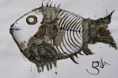 """Стефан Димовски """" Анатомија на рибата """" тех-цртеж дим 50х70см 2020год"""